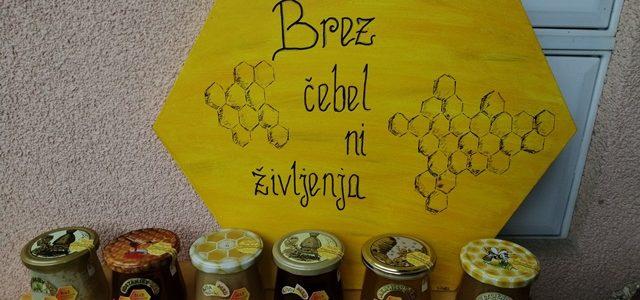 Obisk mladih čebelarjev pri Rižnarjevih v Pristavi